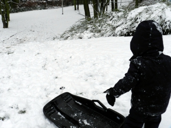 sledding in Brussels